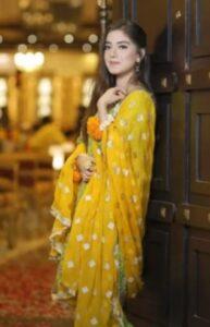 Arisha Razi film list